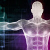 The Human Body: A Masterpiece of Engineering